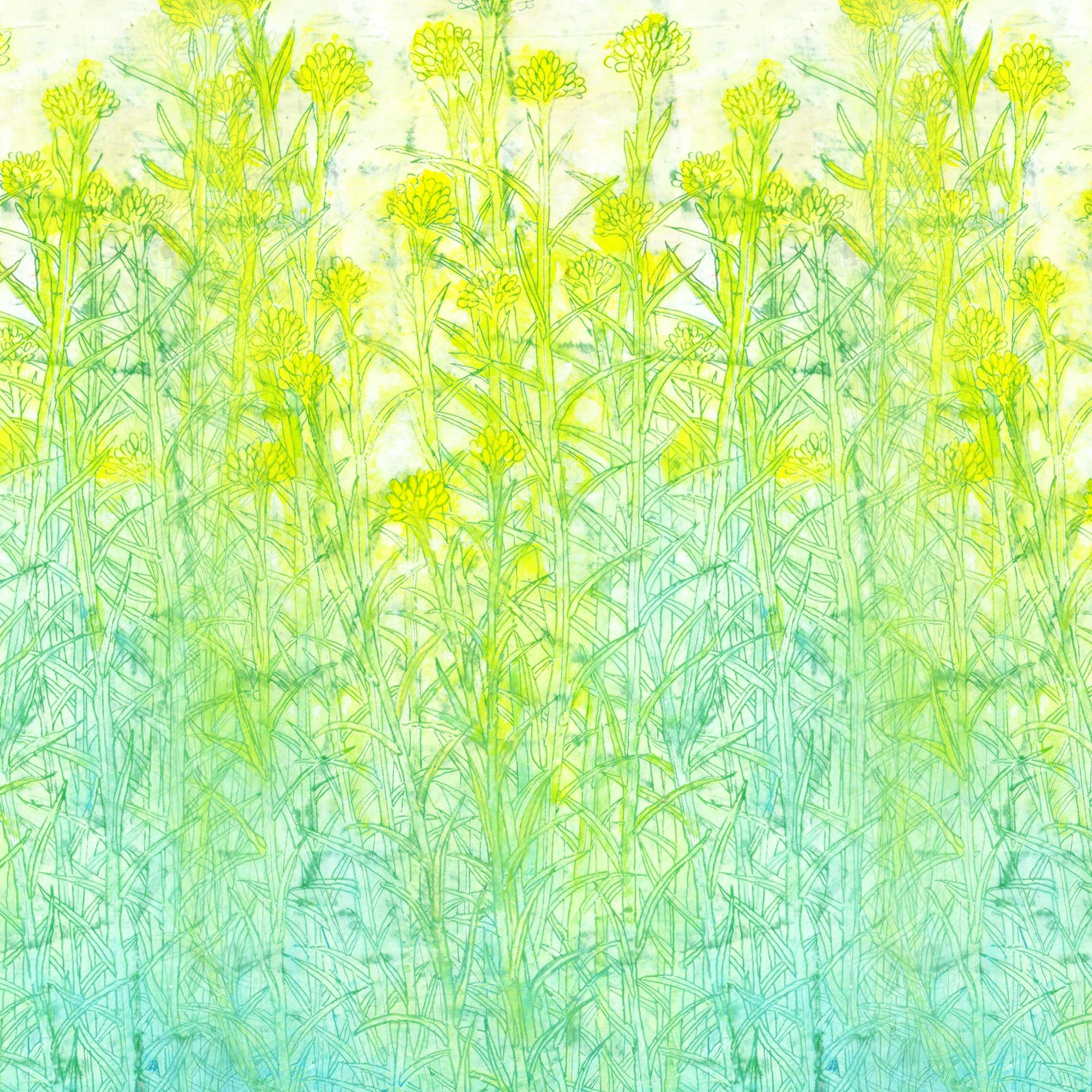 wp yellowgreen Planted スマートフォン用壁紙